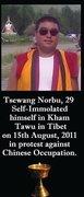 Vigil for Tsewang Norbu: Please light candles, raise Tibets flag
