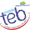 Saberes 2.0 - Desarrollo de Entornos Virtuales de Aprendizaje – Modelo TEB Indupalma