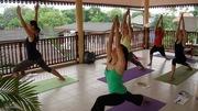 Yoga Teacher Training 200 Hrs