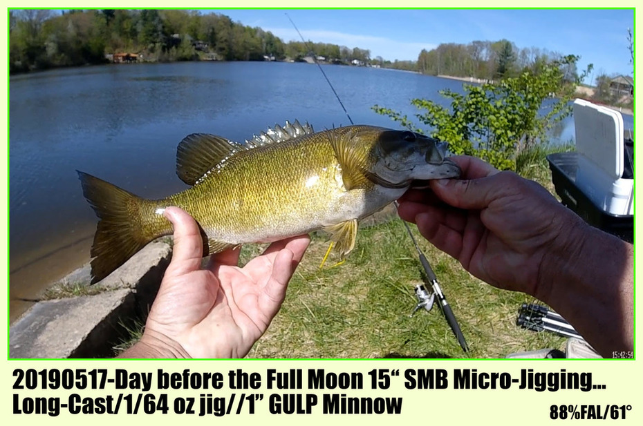"20190517-Day before the Full Moon 15"" SMB Micro-Jigging...  Long-Cast/1/64 oz jig//1"" GULP Minnow"