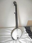 Steve's Banjos