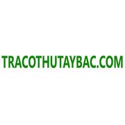 "<a href=""https://tracothutaybac.com/"">https://tracothutaybac.com/</a>"