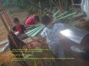 ...Ayudanos... Queremos llevar un Arbol Solar a Una Escuela Rural...