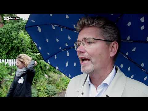 Mads Palsvig interviews 10 DK Politicians re.  Money Creation (English CC)