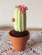 Amigurumi Kaktus mit Blüte