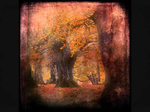 Between Interval: Garden of the Divine