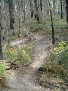 Railing the trails at Forrest