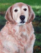 """Pet Portrait Painting Sample """"Golden Retriever"""""""