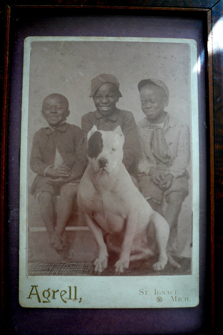 old pic of my great great grandfather's bulldog