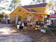 Fall at Junk in the Trunk