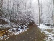 Snow in Sevier County, TN