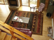 Bear walk rug in the living area