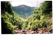Hiking to Kalalau Valley