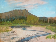 Braided Stream, Denali