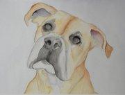 Regan - Watercolor