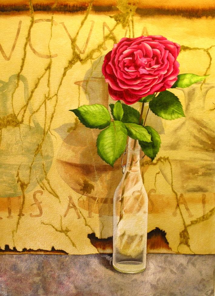 """""""Rose Of Pompeii"""""""