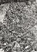 Shoah - At the Birkenau pit