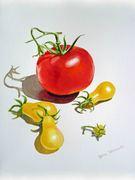 Tomatoes Dance