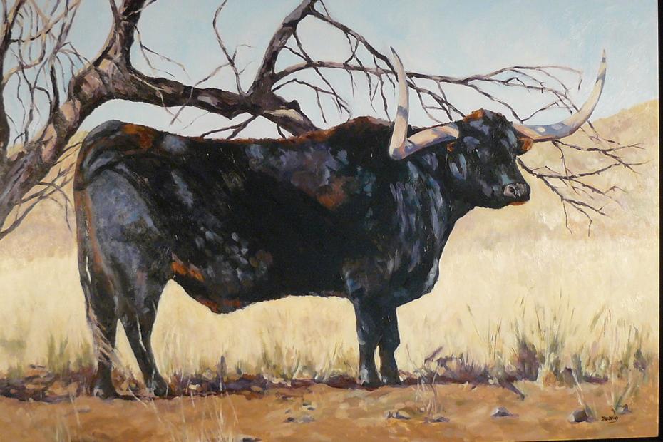 black longhorn