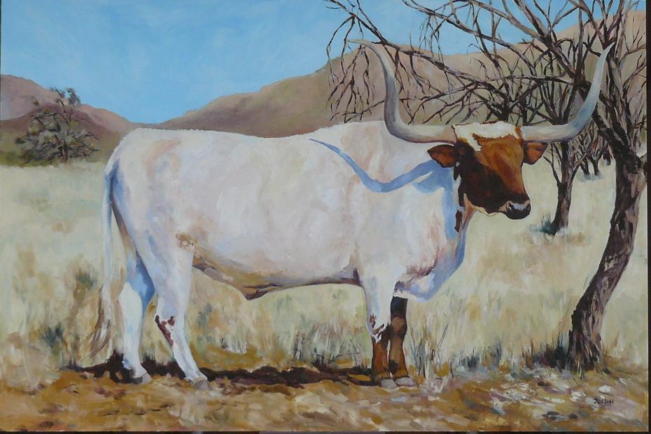 brown&white longhorn