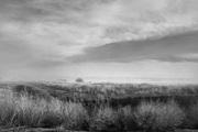 Sheridan Lake Drought 3