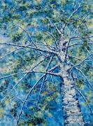 Blue Birch