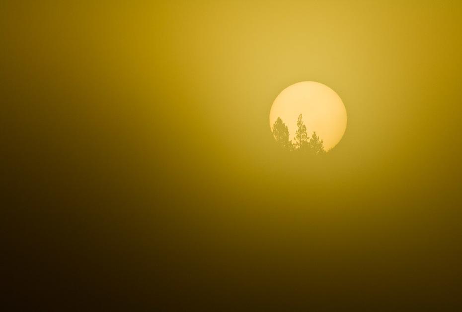 Sunrise, Smoke, Hayden Valley