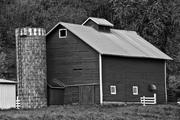 Family Farmsteads