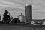 Farm #15