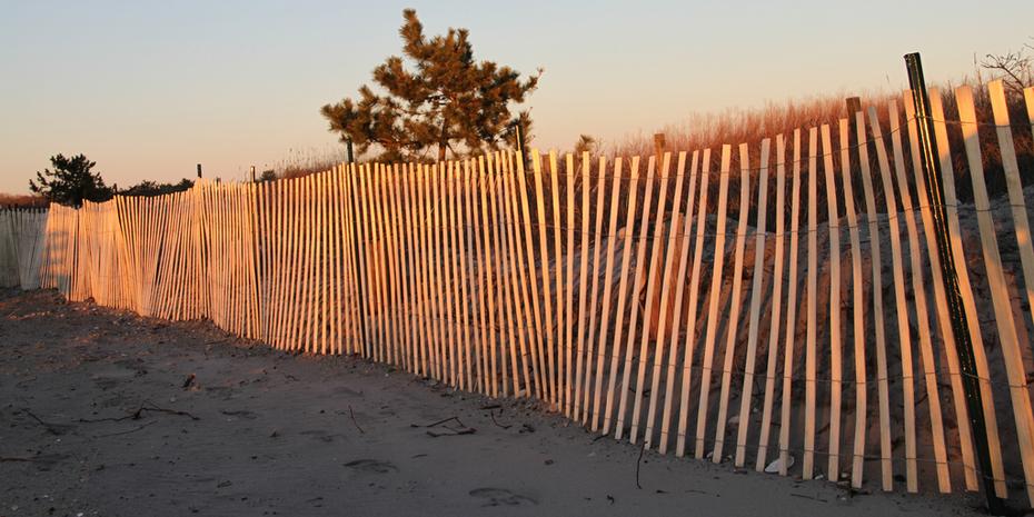 02 26 12-Random Beach Shots-WEB 042