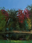 Helisport pond