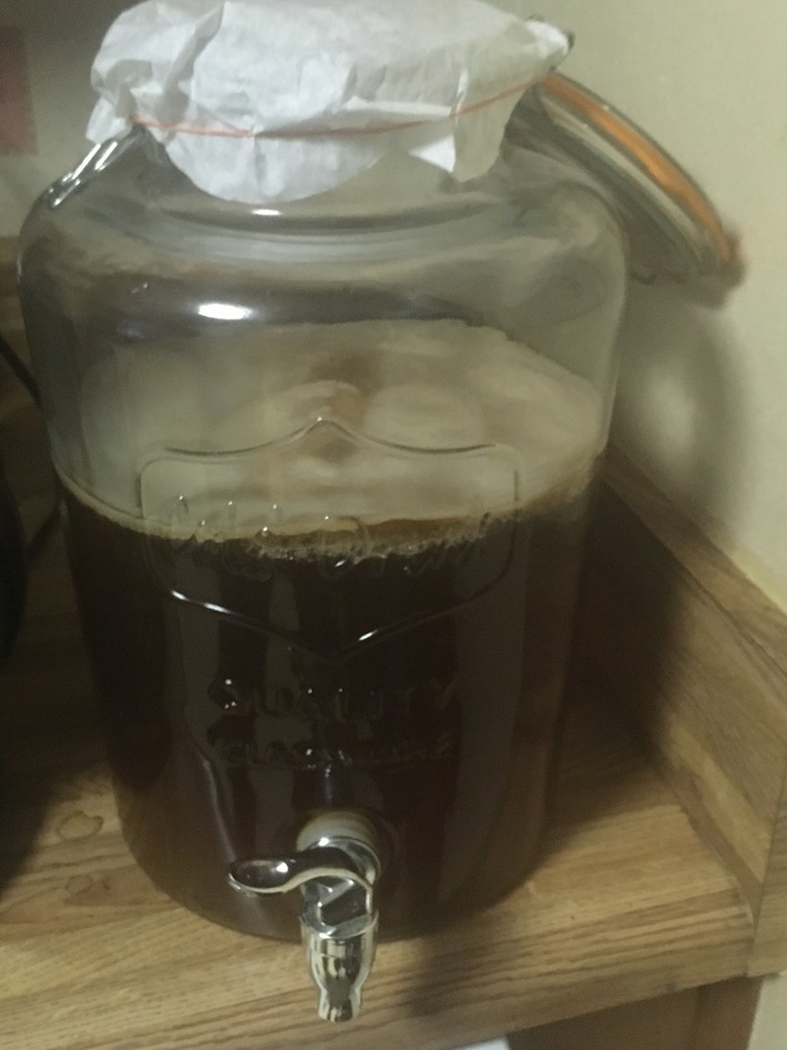 The SCOBY that took over the kitchen.