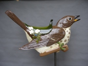Carved wooden Hermit thrush by Tracy Kochanski.jpg