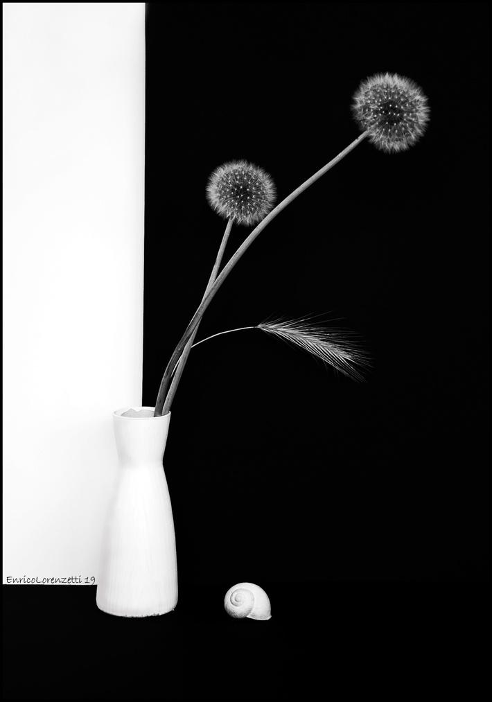 bianco&nero