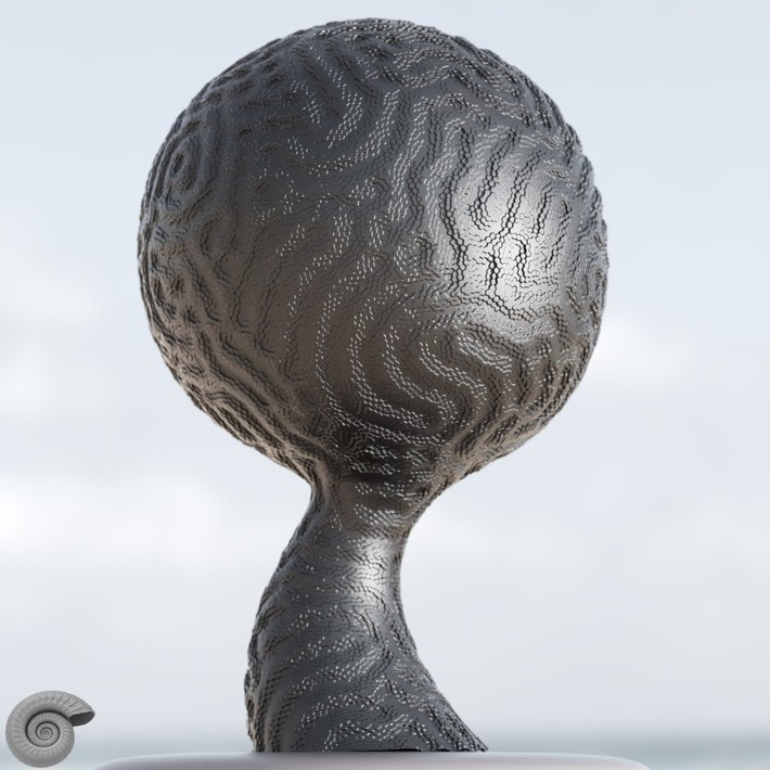 Dual Mesh Displacement of a Reaction Diffusion Pattern