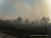 incendio santa rosa 122
