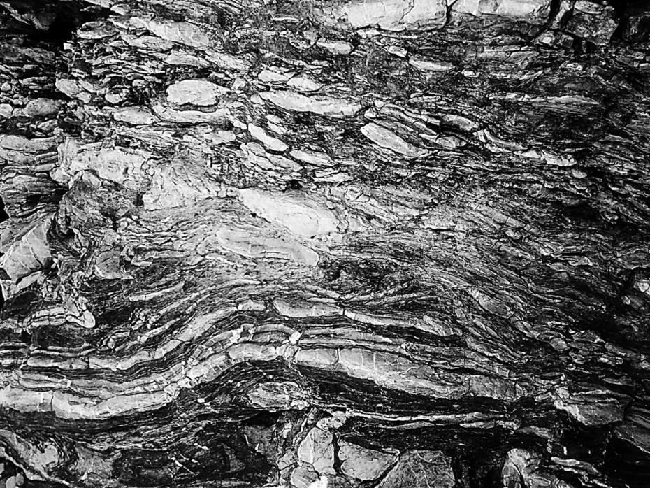 Pattern naturali