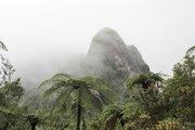 NZ Landscapes