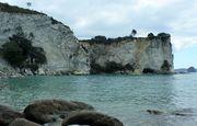Coromandel /Kaimai /Seabird Coast Precious for everyone