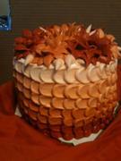 ombre cake - 916F