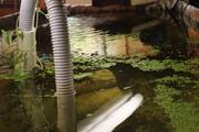underside of the trout tank