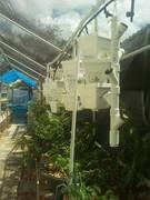 Garden and fountain 012