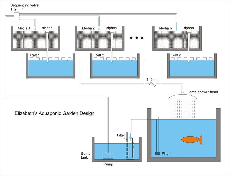 Elizabeth's Aquaponic Garden Design