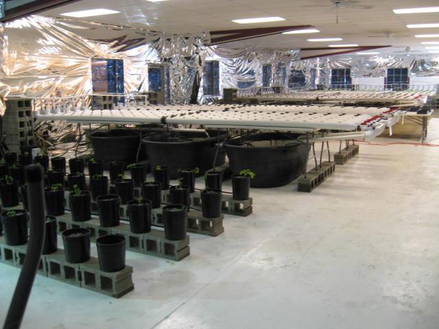 Aquaponics 3 -30-2012 001