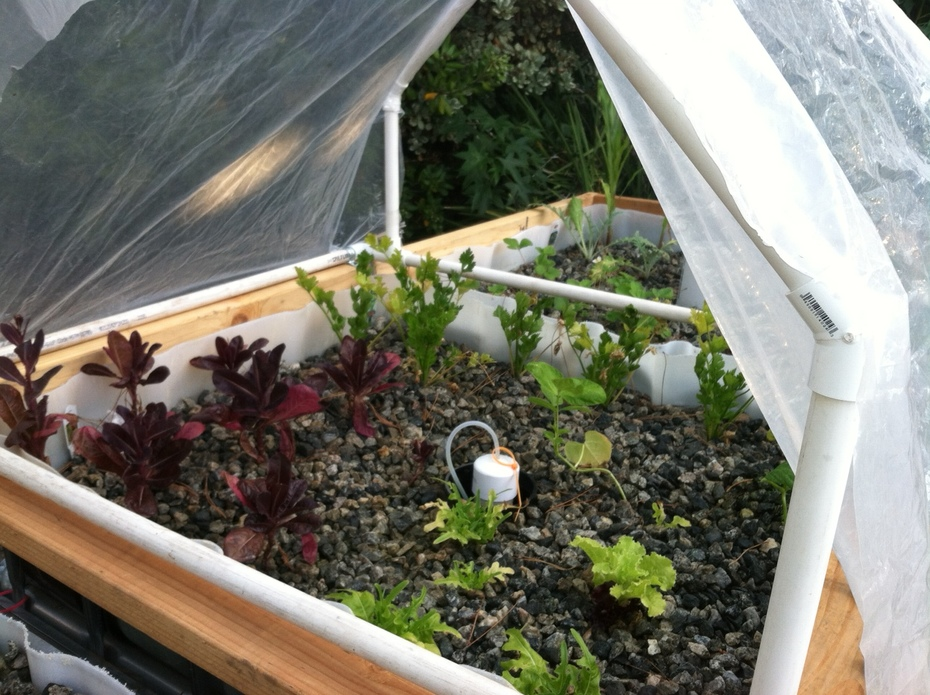Modular green house