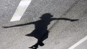 il volo dell'ombra