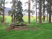 Spring on the Snake River Breaks E. Oregon