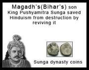 Pushyamitra Sunga of Magadh revived Hinduism