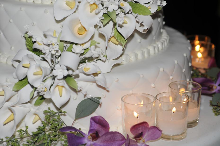 Wedding from Carol 727