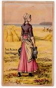 Vintage Grocery Store Trade Card - Evangeline
